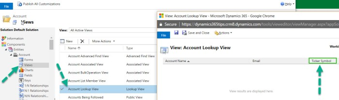 Customize Lookup - Example - Account Lookup View